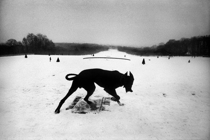 FRANCE. Hauts-de-Seine. Parc de Sceaux. 1987.